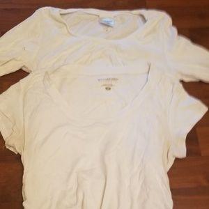 Set of 2 maternity t-shirts